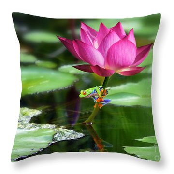 Water Lily And Little Frog Throw Pillow