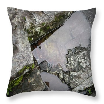 Throw Pillow featuring the photograph Water On The Rocks 2 by Juan Contreras