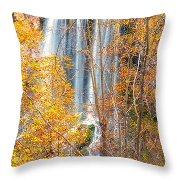 Throw Pillow featuring the photograph Waterfall Backdrop by Russell Pugh