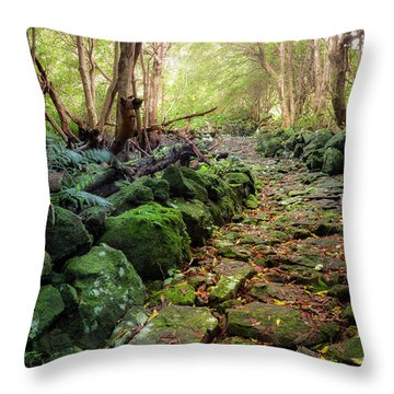 Waterfall Path Throw Pillow