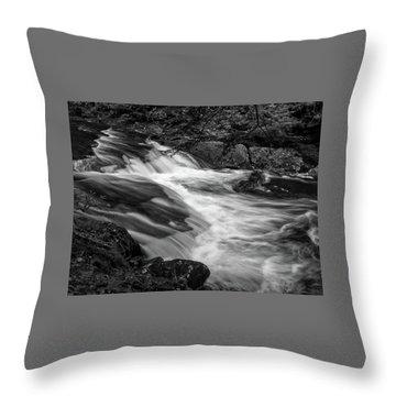 Throw Pillow featuring the photograph Waterfalls At Ricketts Glenn by Louis Dallara