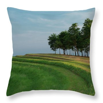 Waves Of Grass Throw Pillow