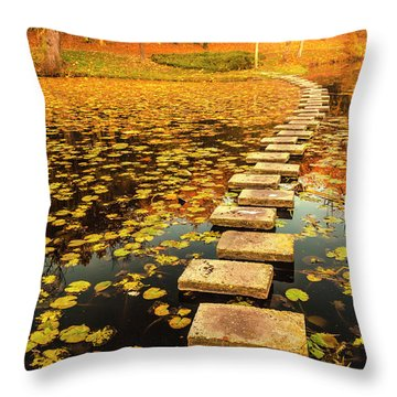 Way In The Lake Throw Pillow