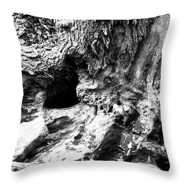 Weathered Stump Throw Pillow