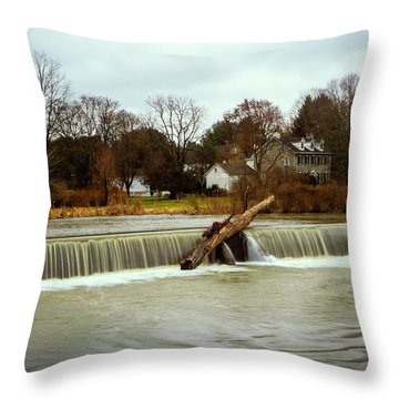 Wehr's Dam - Kodak Color Profile Throw Pillow