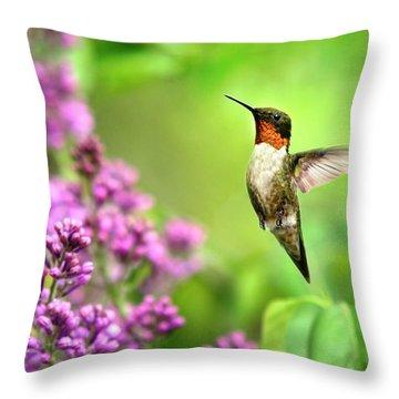 Welcome Home Hummingbird Throw Pillow