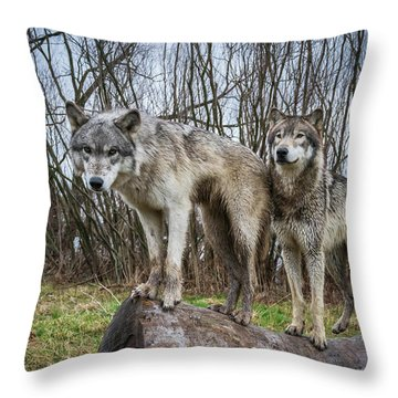 Well Hello Throw Pillow