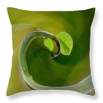 Wellness And Prevention Throw Pillow
