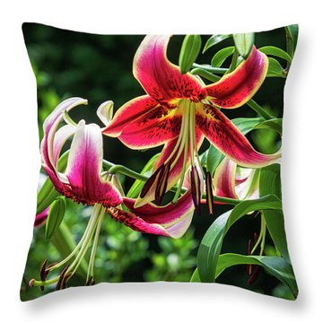 Western Lily Throw Pillow