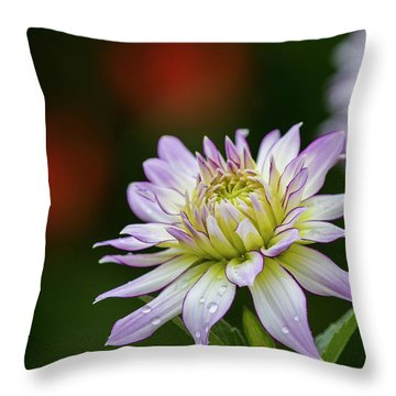 Wet Petals Dahlia Throw Pillow