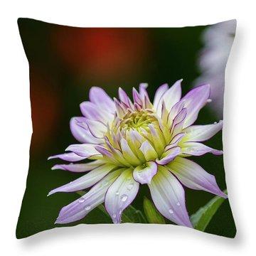 Wet Petals Dahlia Throw Pillow