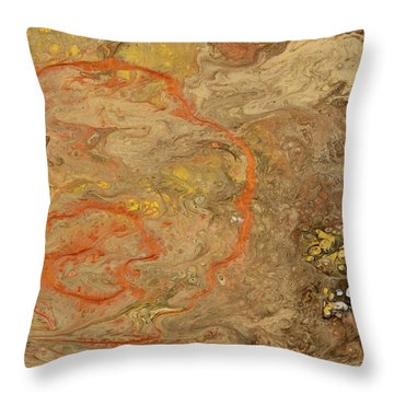 Wet Riverbed Throw Pillow