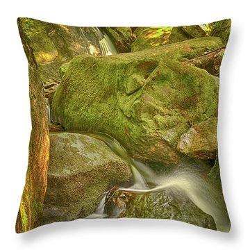 Wet Rocks Throw Pillow
