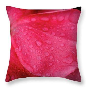 Wet Rose Petal Throw Pillow