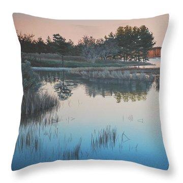 Wetland Reverie Throw Pillow