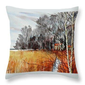 Wetlands Edge Throw Pillow by Art Scholz