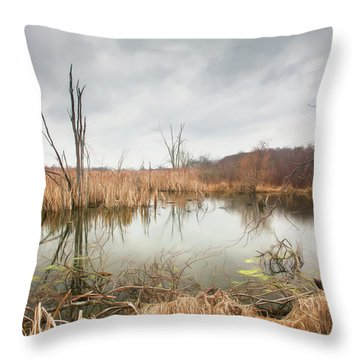 Wetlands On A Dreary Day Throw Pillow