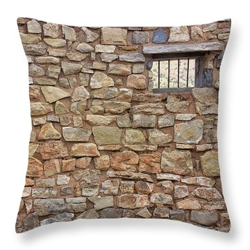 What Tales To Tell Throw Pillow