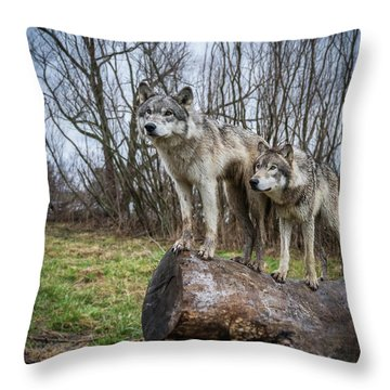 What Ya Looking At Throw Pillow