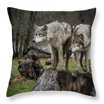 What Ya Think Throw Pillow