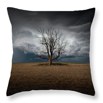 When Dreams Become Reality Throw Pillow