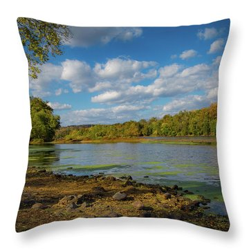 Throw Pillow featuring the photograph Where Washington Crossed by Lora J Wilson