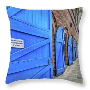 Which Blue Door Throw Pillow