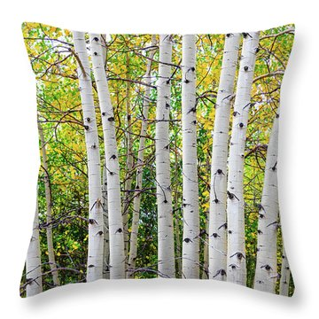Throw Pillow featuring the photograph White Bark Golden Forest by James BO Insogna