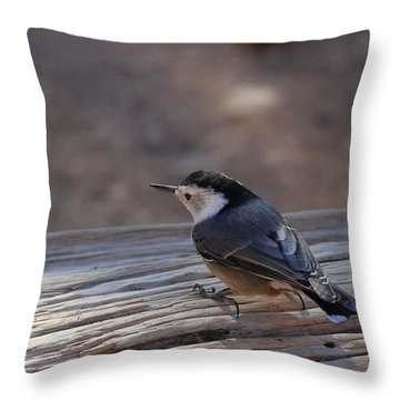 White Breasted Nuthatch Throw Pillow