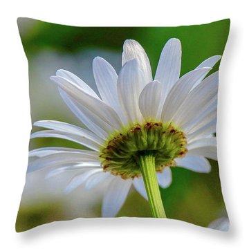 Fresh As A Daisy Throw Pillow