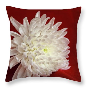 White Flower On Red-1 Throw Pillow