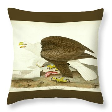 White-headed Eagle Throw Pillow