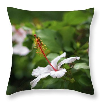 Throw Pillow featuring the photograph White Hibiscus Flower by Pablo Avanzini