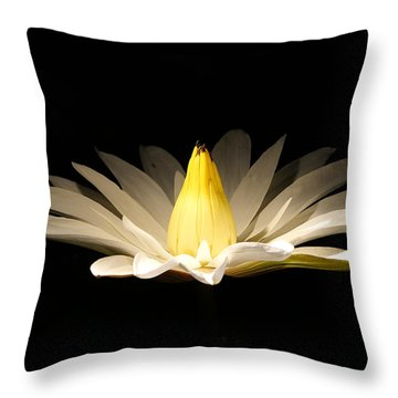 White Lily At Night Throw Pillow