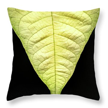 White Poinsettia Leaf Throw Pillow