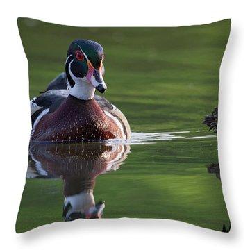 White Rock Wood Duck Throw Pillow