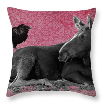 Why Are You Here? Throw Pillow