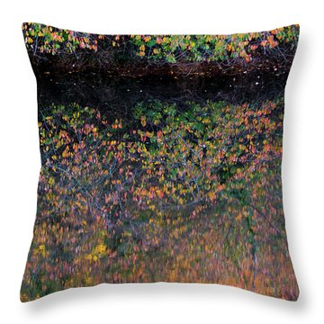 Wild Cherry Tree In The Fall, Golden Reflections On The River Throw Pillow