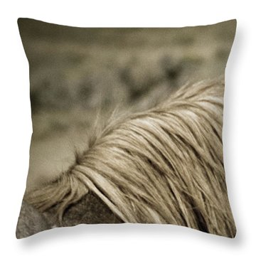 Wild Mustangs Of New Mexico 13  Throw Pillow