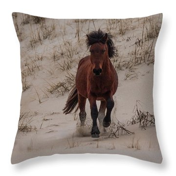 Wild Pony Throw Pillow