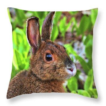 Wild Rabbit Throw Pillow