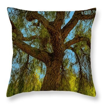 Wild Willow Throw Pillow