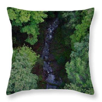 Willow Run Creek Throw Pillow