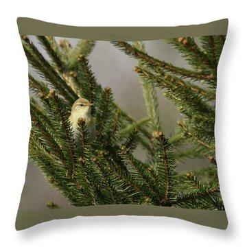Willow Warbler Throw Pillow
