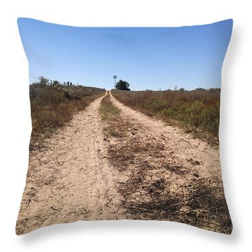 Throw Pillow featuring the photograph Wind And Sand by Carl Young