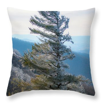 Wind Shaped Throw Pillow