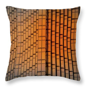 Windows Mosaic Throw Pillow