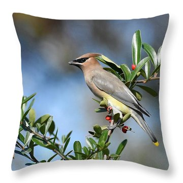 Winged Beauty Throw Pillow