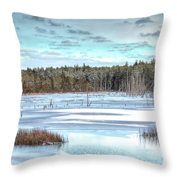 Throw Pillow featuring the photograph Winter At Lake Oswego by Kristia Adams