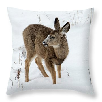 Winter Bambi Throw Pillow